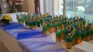 Организиране на Парти за конференции